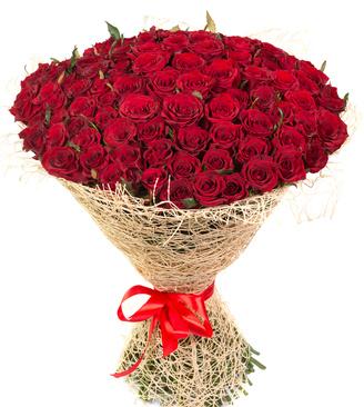 100 rose rosse